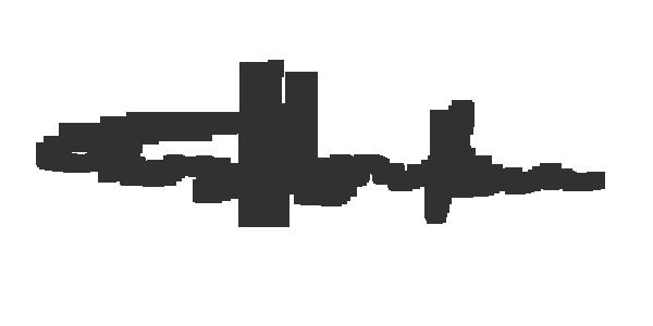 Teruyo Horikawa Signature