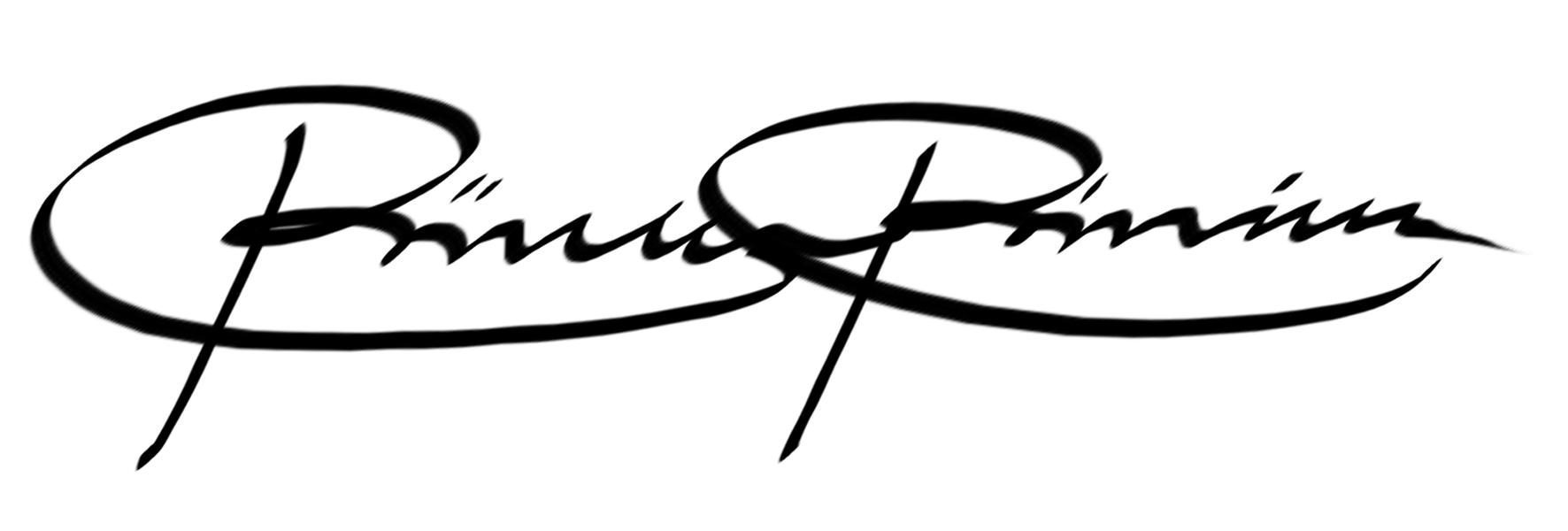 Riikka Sofia Riekkinen Signature