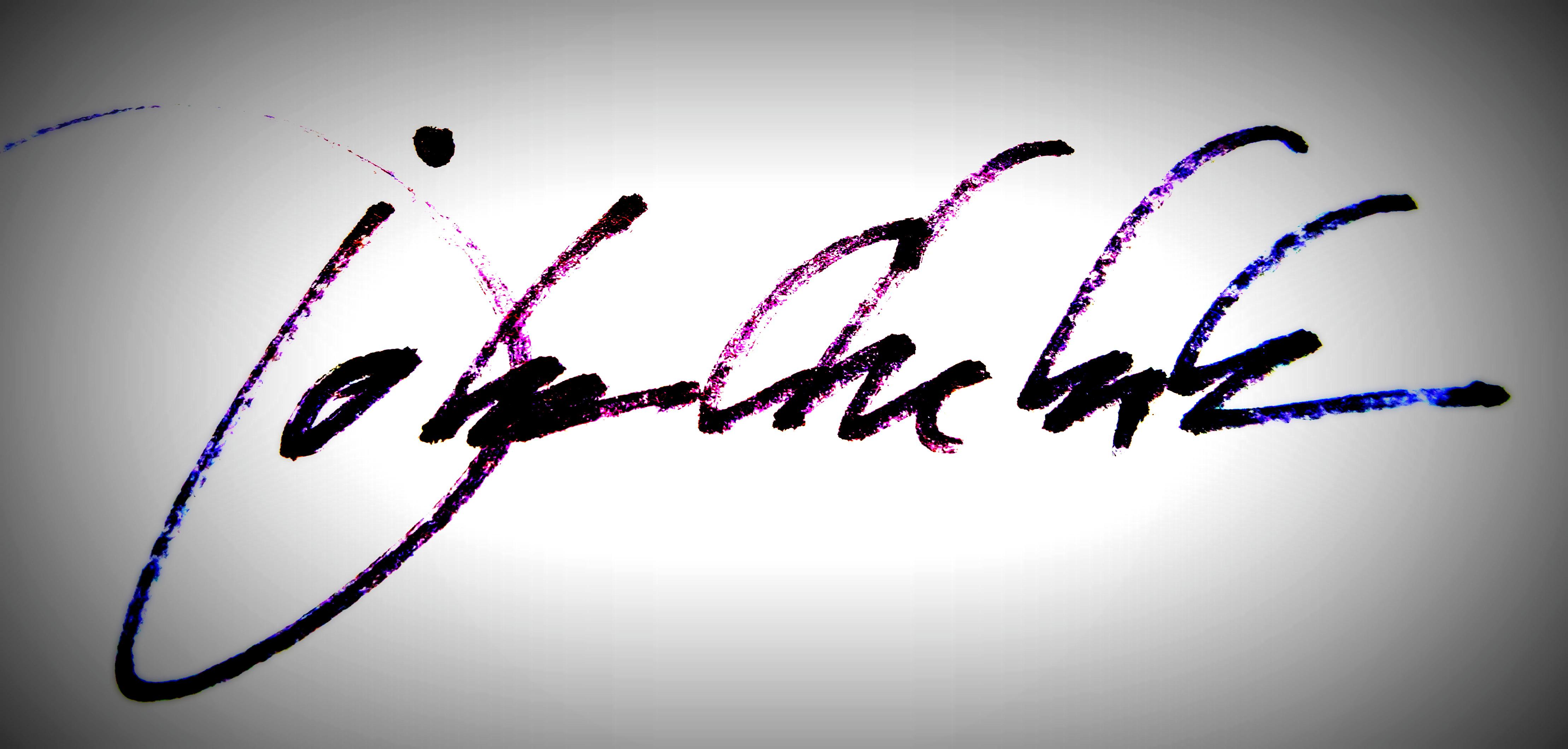 john chehak Signature