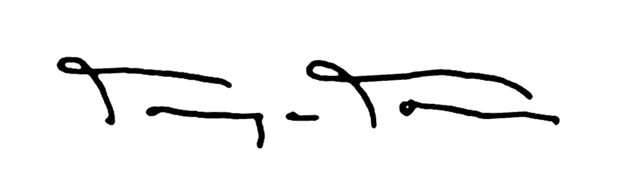Tanya Torres Signature