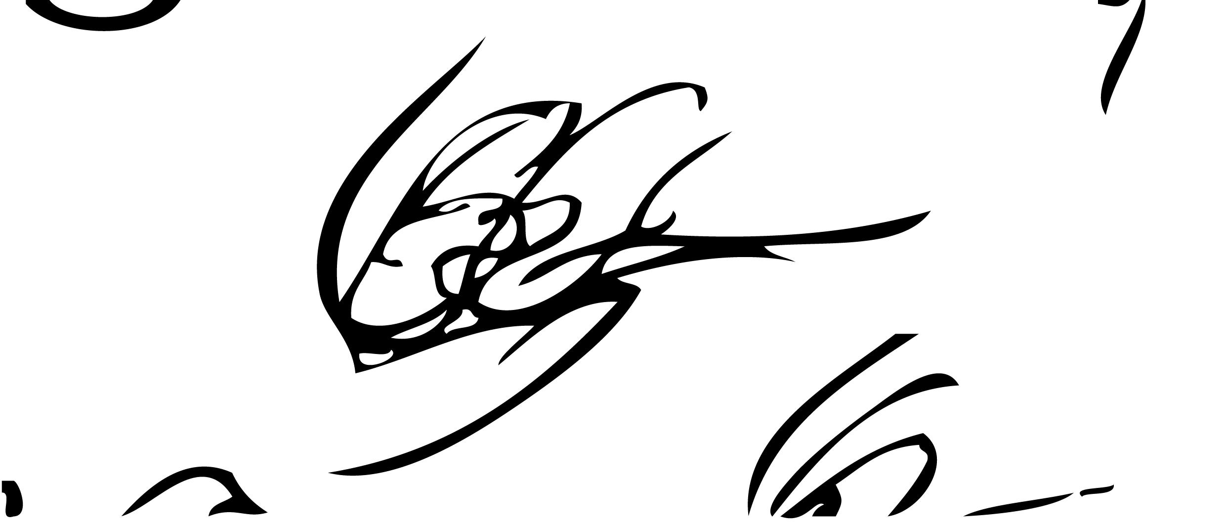 Liam Garrett Signature