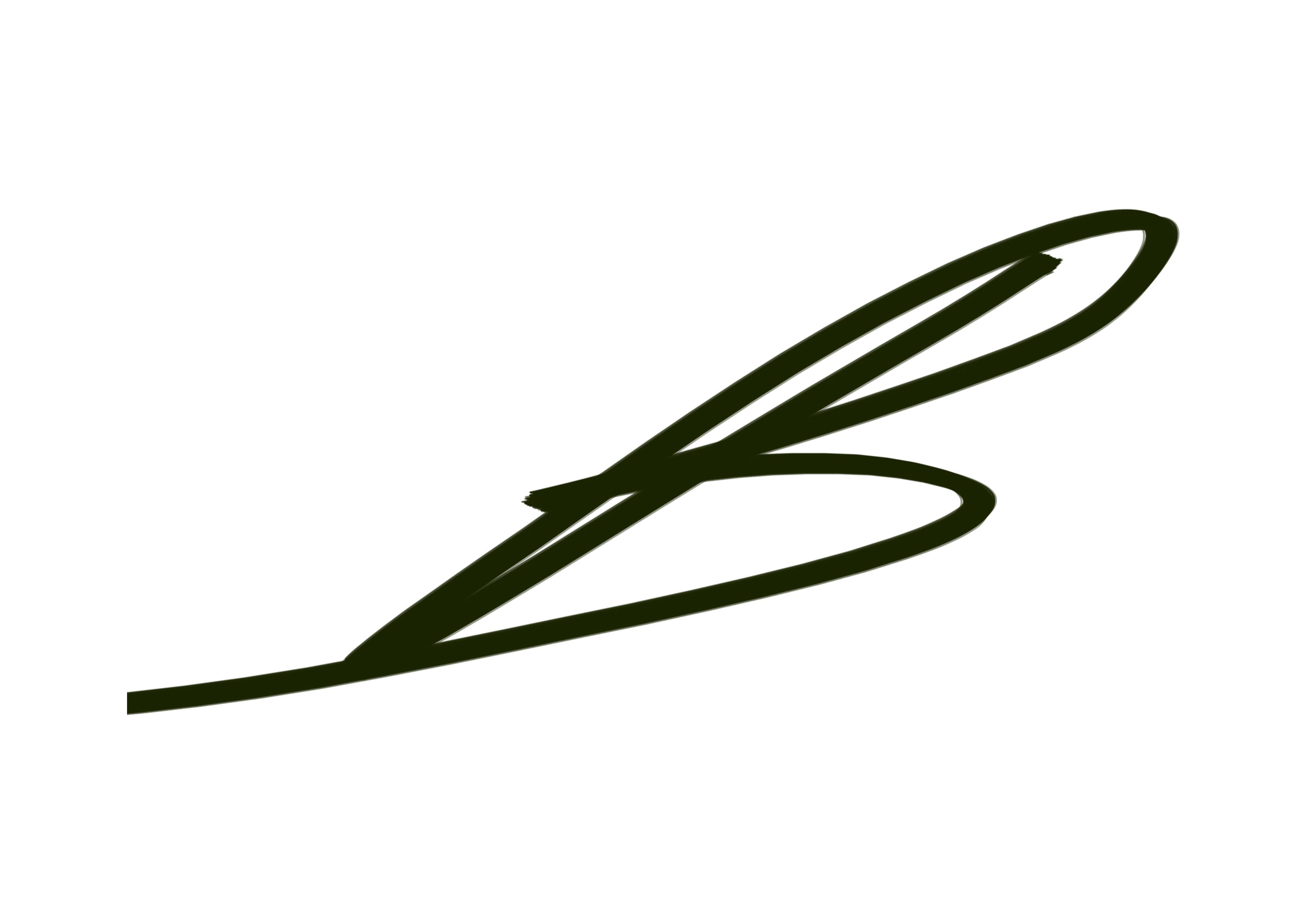 Burkhan Baykara Signature