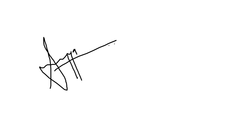 sumayya bagwan Signature