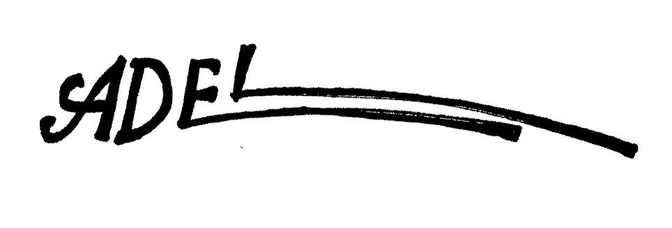 adel aBDEL- RAHMAN Signature