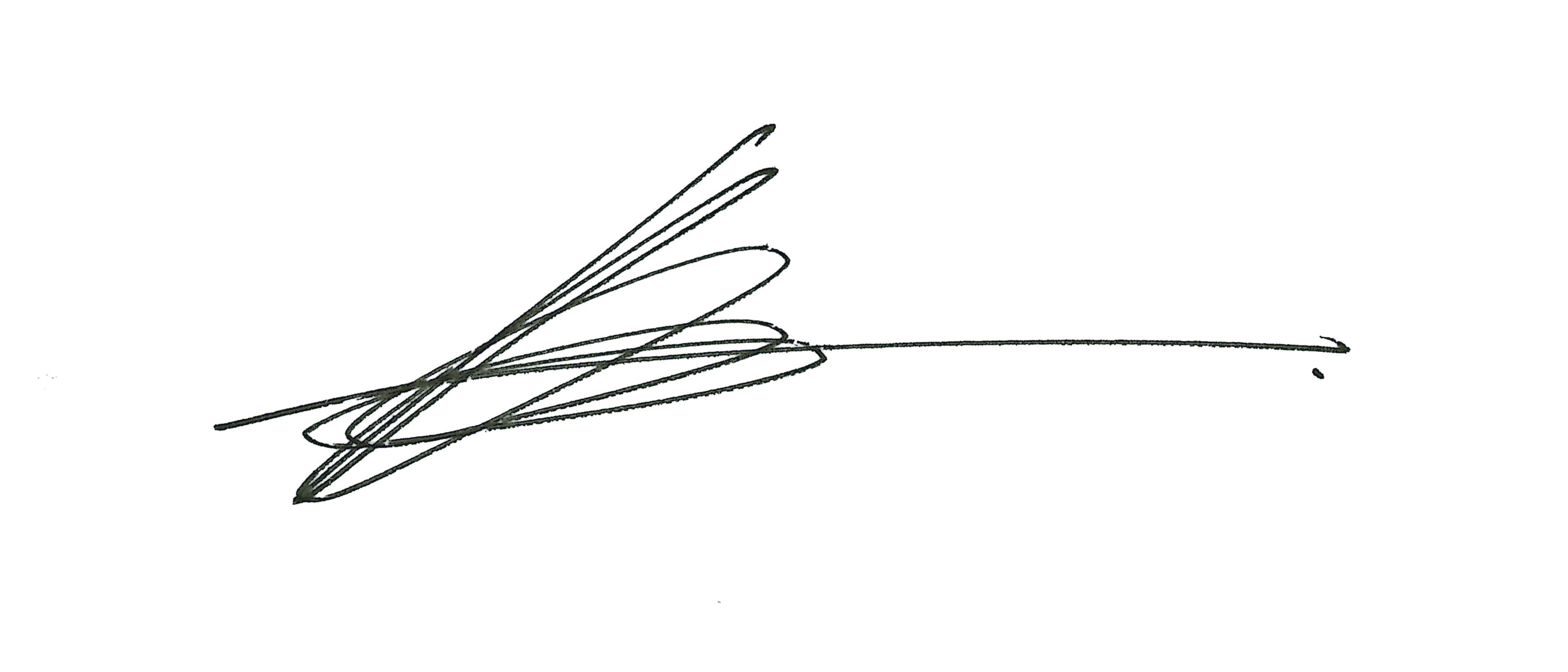 Michael Pinet Signature