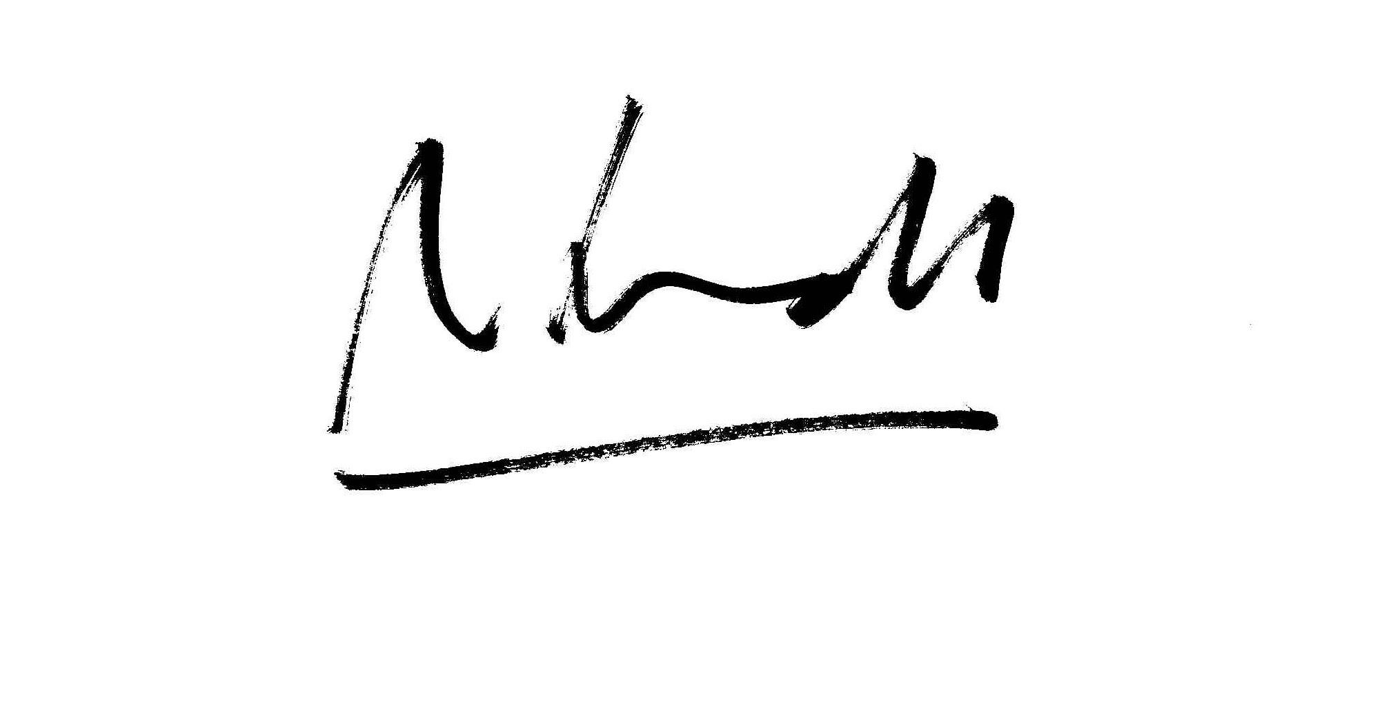 Ana Schmidt Signature