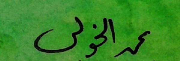 Mohamed  Elkholy Signature