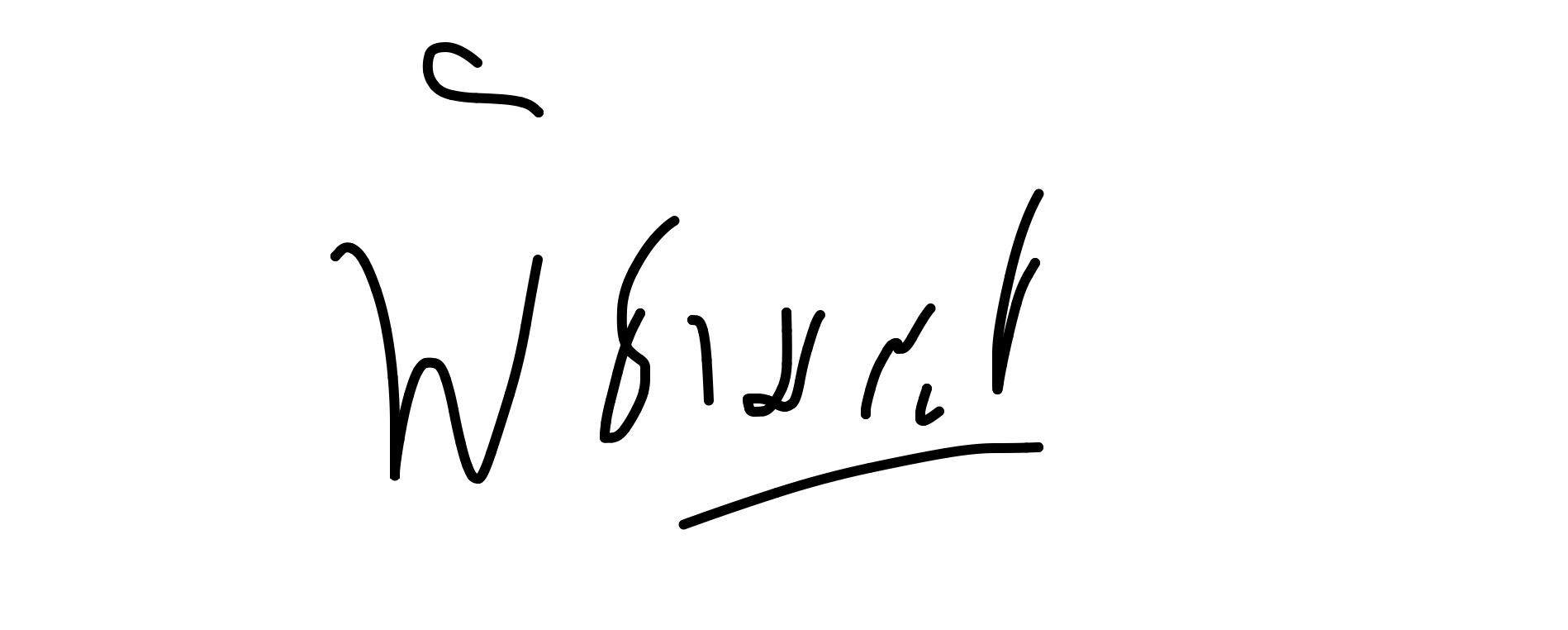Pichamon S. Signature
