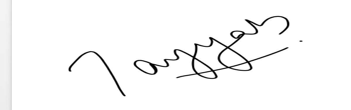 Tayyab Nadeem Signature