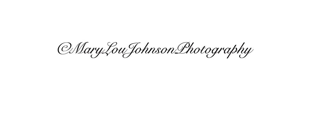 Mary Lou Johnson Signature
