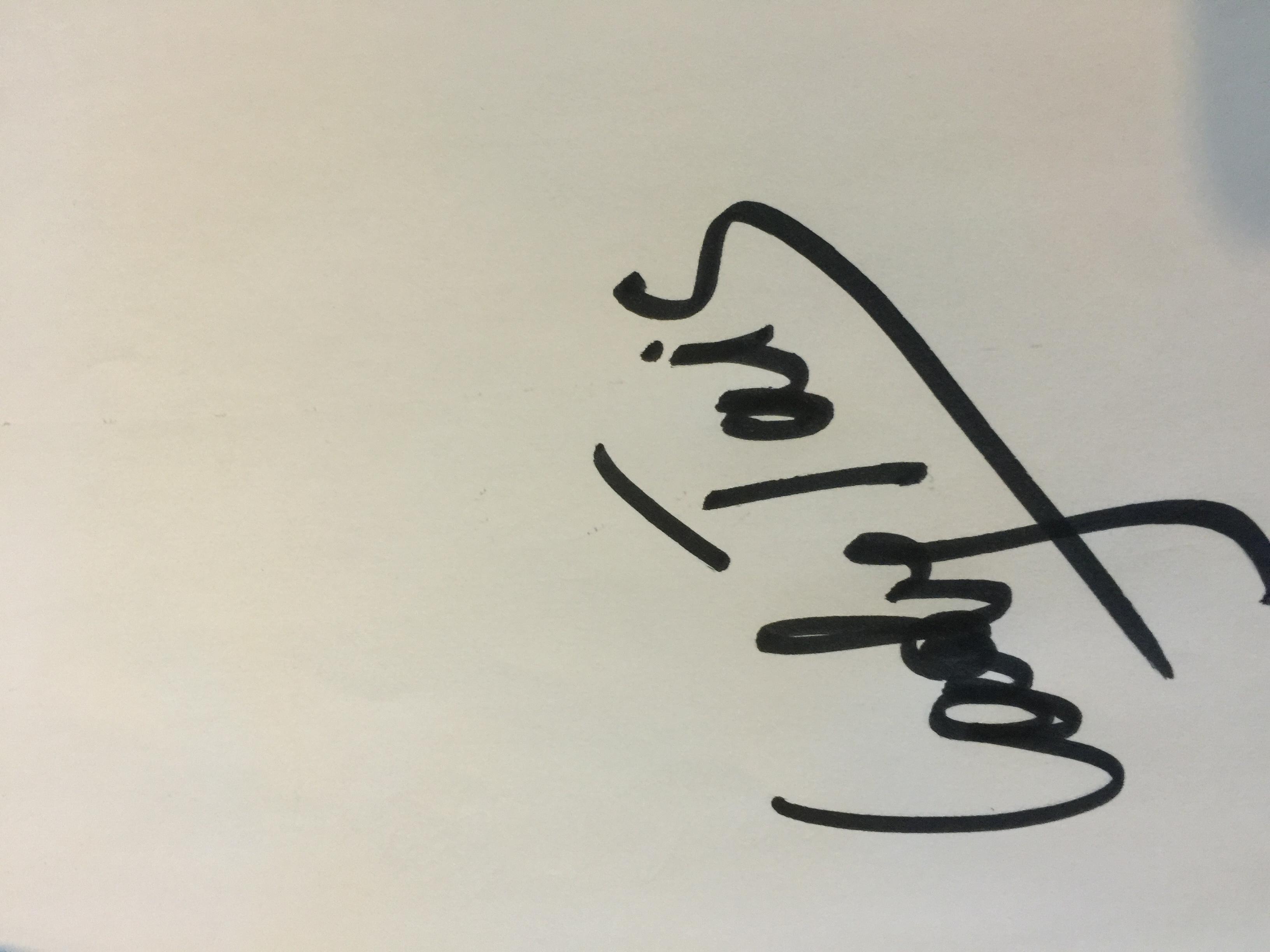 Taisia Novakhova Signature