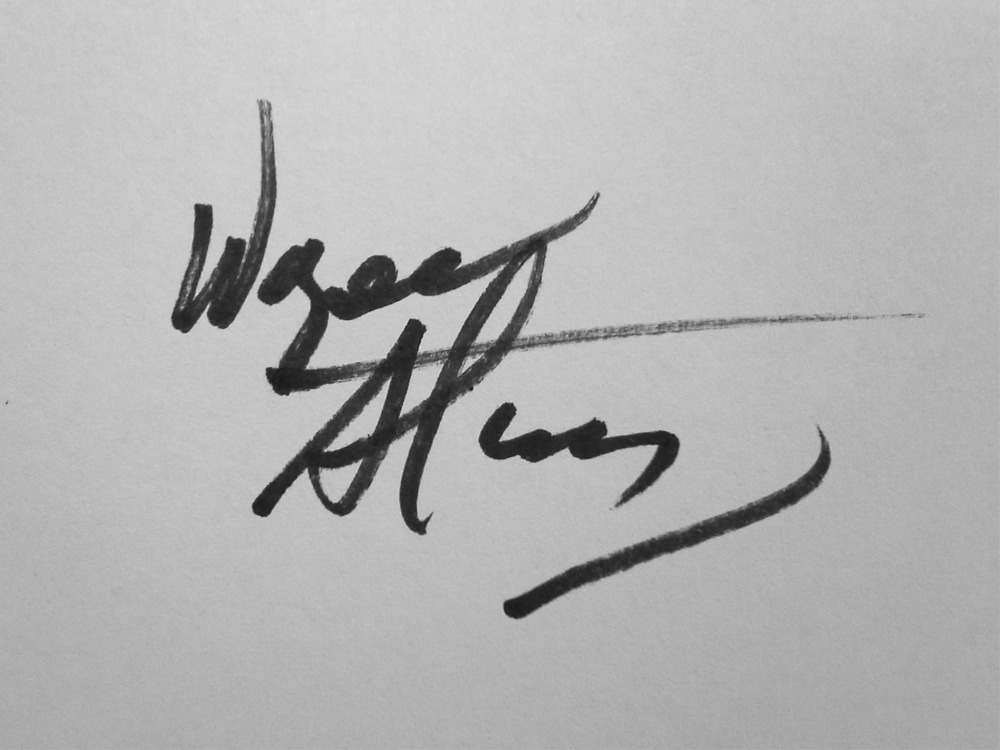 Wayne Stephany Signature