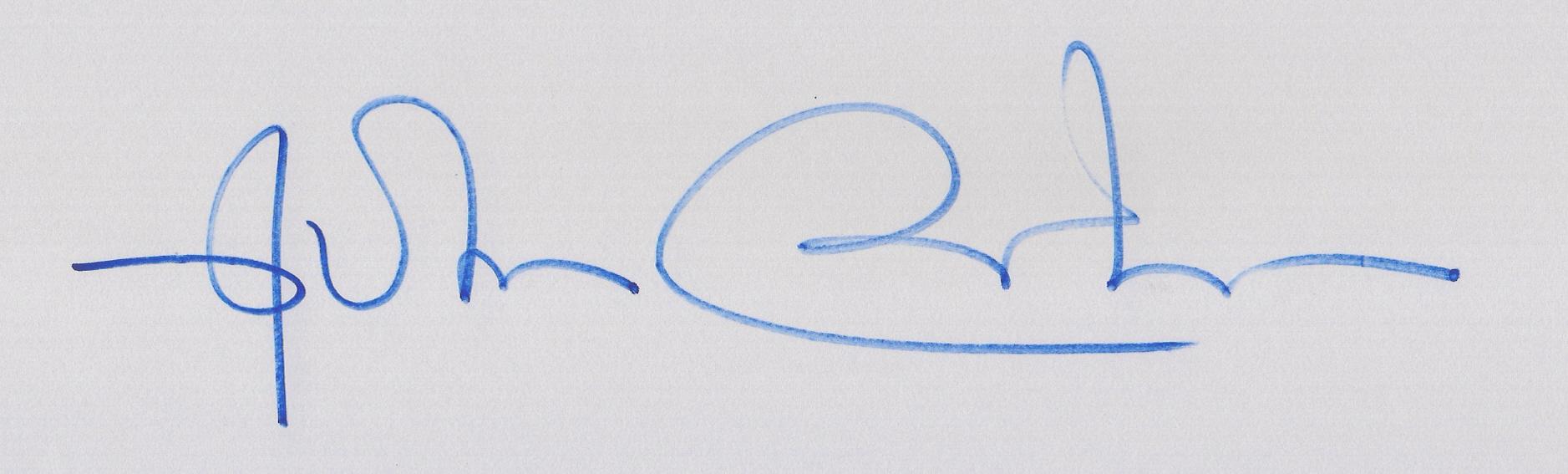 NEWTON ROCHA Signature