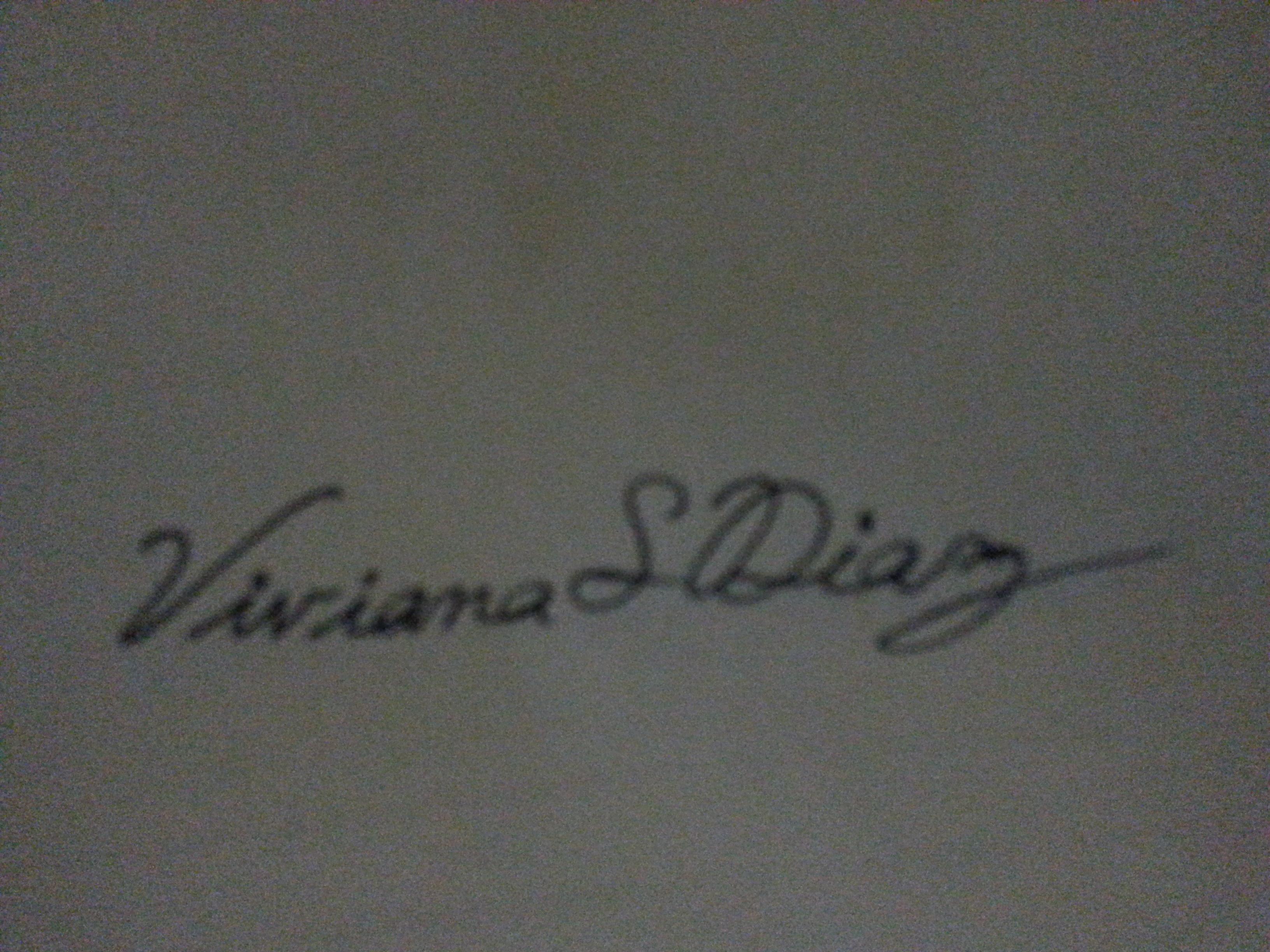 Viviana S. Diaz Signature