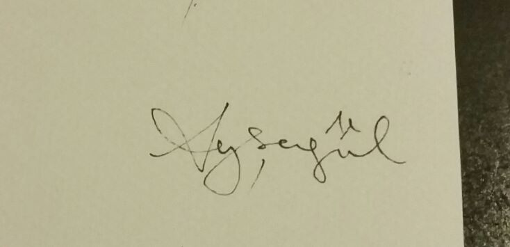 aysegul tasdemir Signature