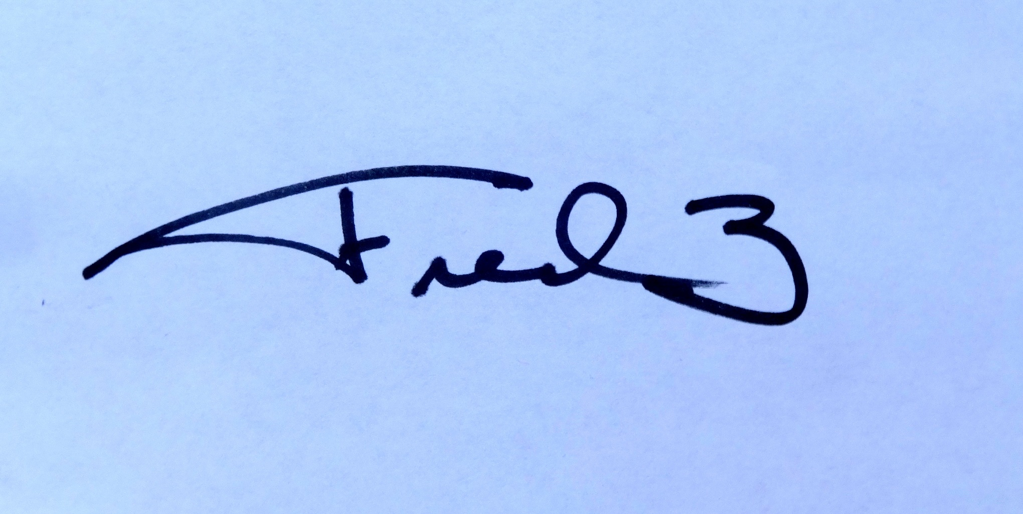 fred wilson Signature
