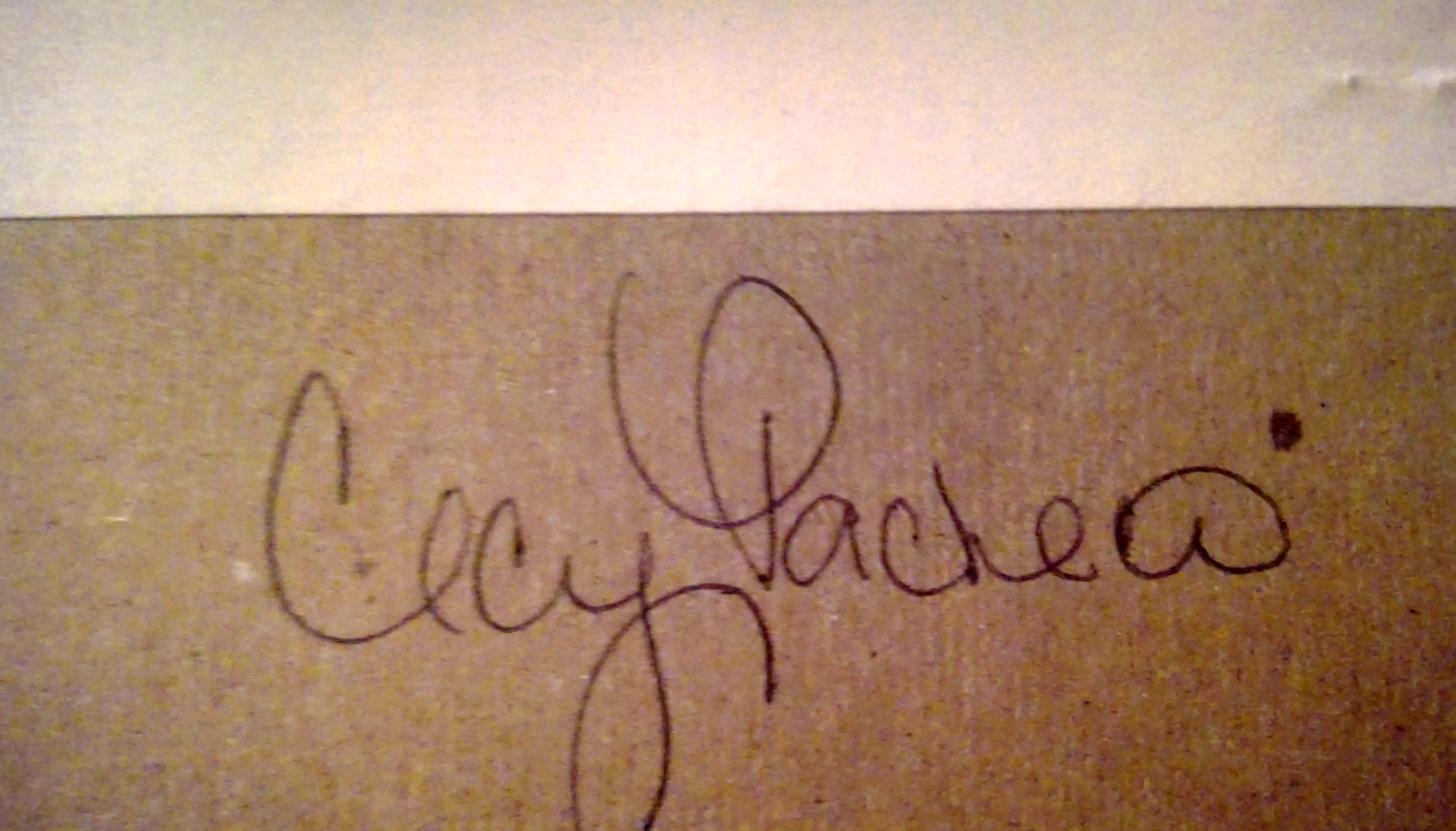 cecy pacheco photography Signature