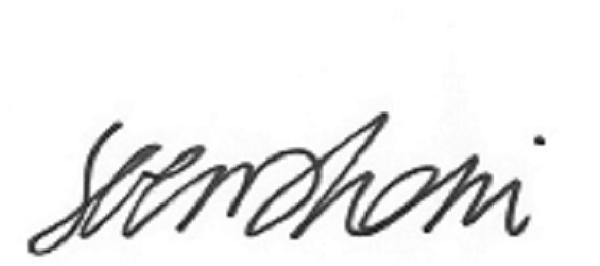serena Rossi Signature